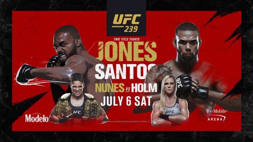 Прогноз на бой Джон Джонс - Тиаго Сантос на UFC 239