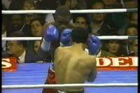 Terry Norris vs Luis Santana. Трилогия.