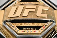 Рейтинг бойцов UFC за февраль 2019 года