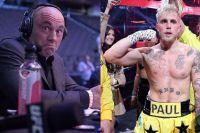 Джо Роган считает, что Джейк Пол побил бы его в боксерском матче