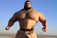 """Бывший боец UFC: """"Если «Иранский Халк» умеет драться, то это будет просто катастрофа"""""""