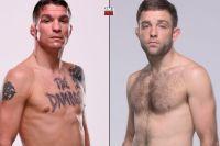 Даррен Элкинс против Райана Холла на июльском турнире UFC в Сакраменто