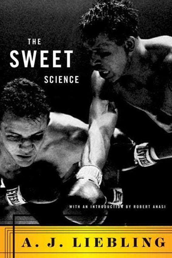 «Сладкая Наука» Эй Джея Либлинга