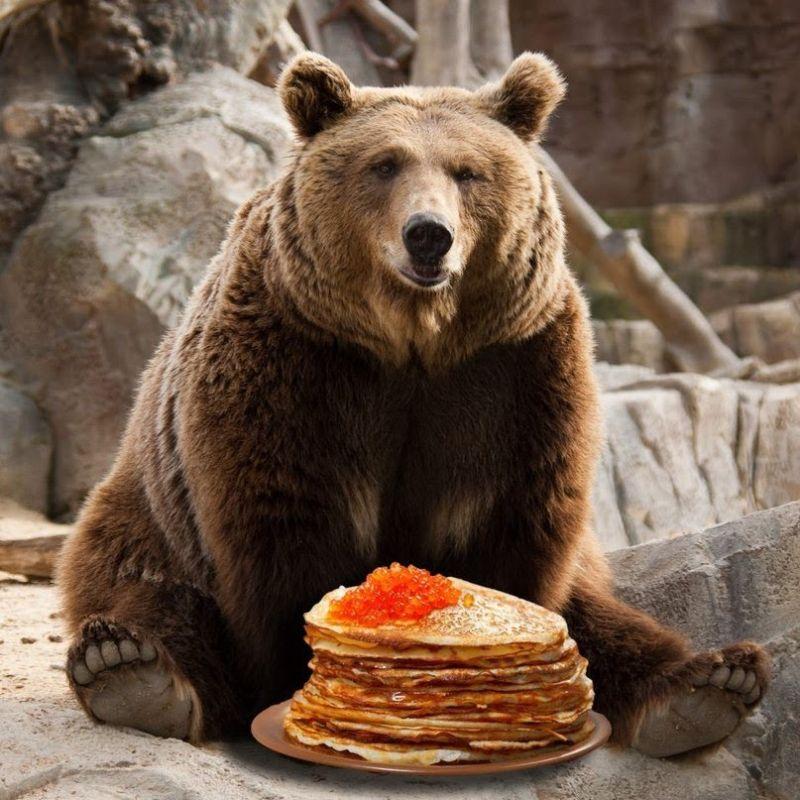 Картинки на день рождения с медведем, теннис