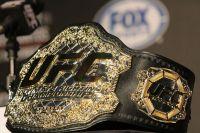 Рейтинг бойцов UFC май 2017