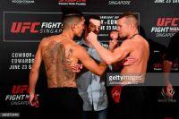 UFC Fight Night 132: Петр Ян нокаутировал Теруто Ишихару