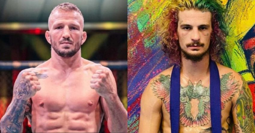 UFC news: TJ Dillashaw shared his opinion about Sean O'Malley