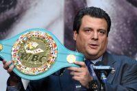 WBC объявил о введении новой программы по контролю за весом бойцов