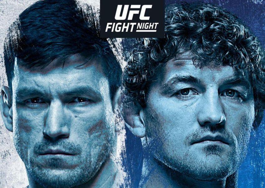 Файткард турнира UFC Fight Night 162: Бен Аскрен - Демиан Майя