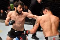 В UFC анонсировали следующий бой Зубайры Тухугова