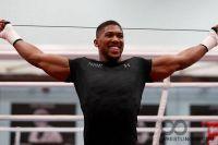 Команда Энтони Джошуа ищет американского боксера на замену Джарреллу Миллеру