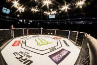 Слух: третий турнир UFC в России пройдет не в Сочи