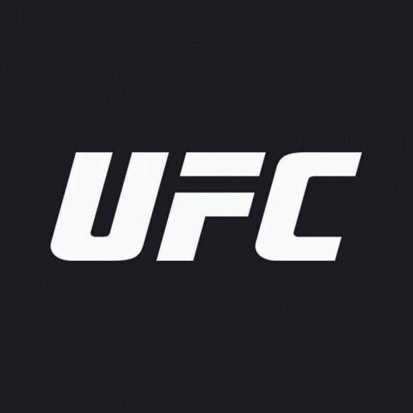 Рейтинг бойцов UFC за май 2019 года