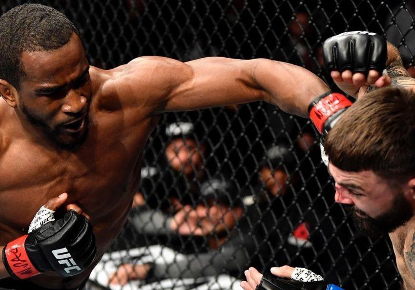 Джефф Нил досрочно остановил Майка Перри на UFC 245