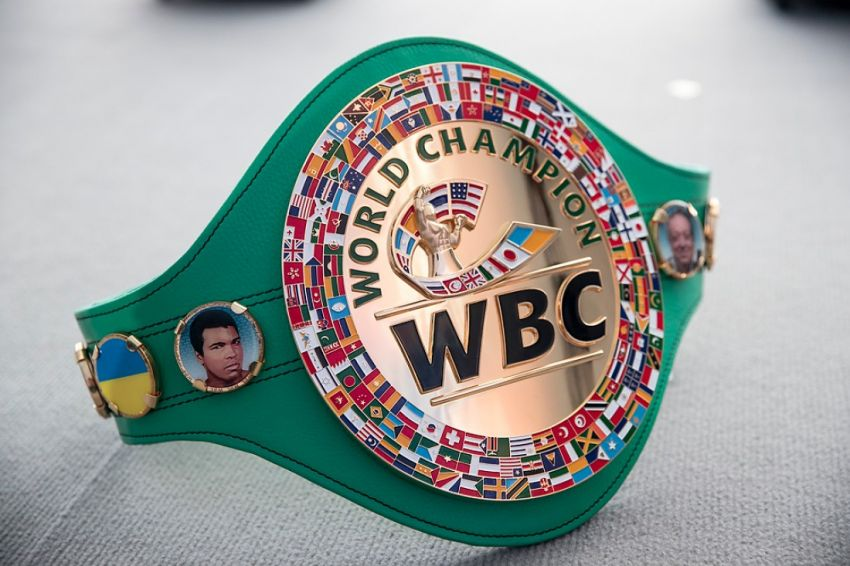 """WBC named """"Fighter of the Year 2020"""" - two boxers."""