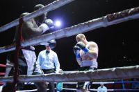 Воронежский боксер Андрей Князев нокаутировал камерунца во втором раунде