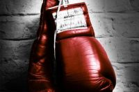Переписка звёзд бокса