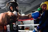 Команды Конора Макгрегора и Пола Малиньяджи ведут переговоры о боксёрском поединке