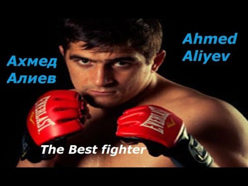 "Ахмед Алиев:""Хабиб уничтожит и Барбозу и Конора"""