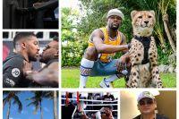 InstaBoxing 20 февраля 2019: Джошуа прилетел в Нью-Йорк, Мейвезер и Околи отдыхают в Майами