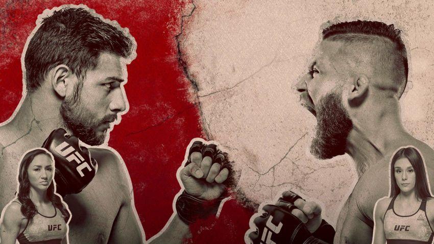 UFC Fight Night 159 Яир Родригес - Джереми Стивенс. Смотреть онлайн прямой эфир
