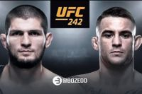 Стала известна цена билетов на турнир UFC 242 в Абу-Даби