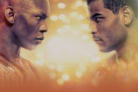 Прямая трансляция UFC 253: Исраэль Адесанья - Пауло Коста, Доминик Рейес - Ян Блахович