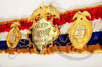 История линейного чемпионства в тяжёлом весе (1885 - 2019)