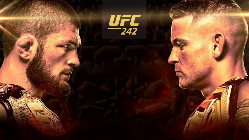 Букмекерские ставки на UFC 242: Коэффициенты на турнир Хабиб Нурмагомедов - Дастин Порье