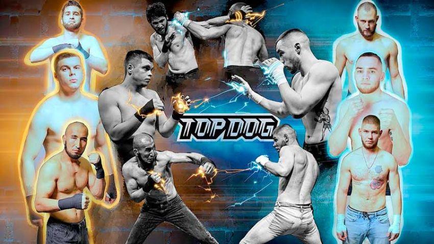 Видео боя Панда - Тарас, Докка - Крылов, Казах - Кузин Top Dog (TDFC 5)
