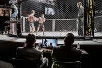 Ассоциация боксерских комиссий может разрешить видеоповторы в ММА